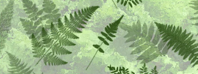 Скачать Ferns Photoshop Brushes by redheadstock