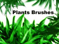 Скачать 16 наборов кистей с изображениями зеленых растений и веток деревьев