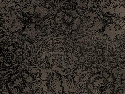 Скачать Vintage Wall Paper Texture