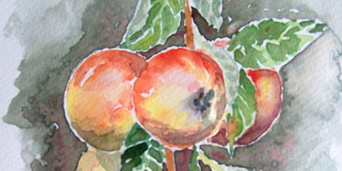 Перейти на Appels