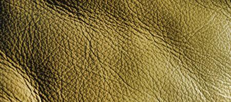 Скачать Текстуру кожи 8