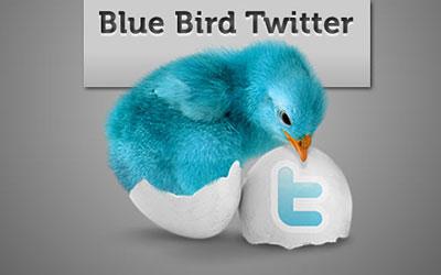 Скачать Blue Bird Twitter Icon