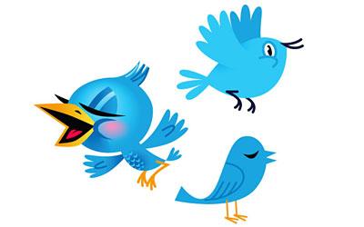 Скачать Free Twitter Birds