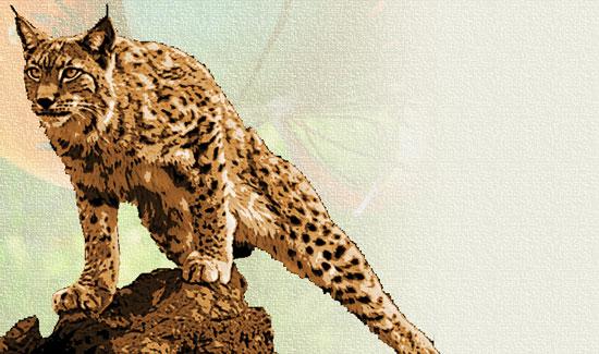 Создаем в фотошопе акварельный постер с крадущимся тигром