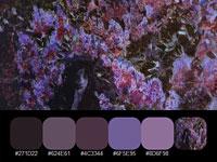 20 готовых цветовых палитр с загадочных картин Михаила Врубеля