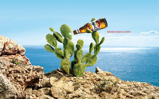 Перейти на Dreher: Cactus