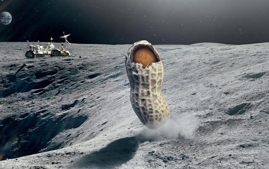 Перейти на Google: Did you mean Astronaut?