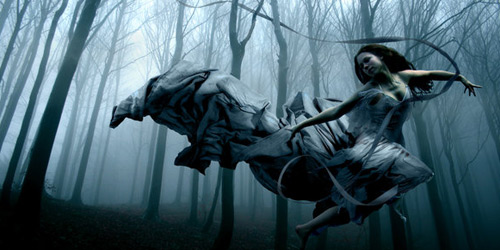 Перейти на Ghost In The Trees
