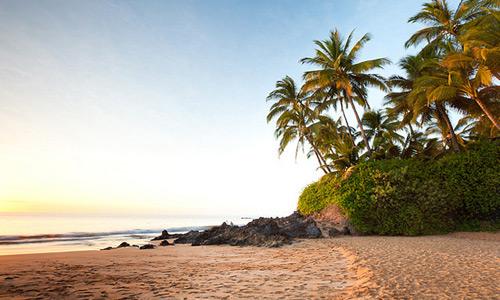 Скачать tropic beach