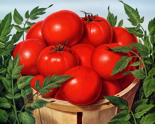 Перейти на How to grow tomatoes like these Campbell's, 1955