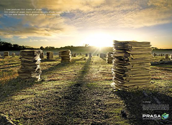 Перейти на PRASA: Paper Forest