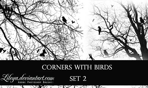 Скачать Cornerswith Birdsset2
