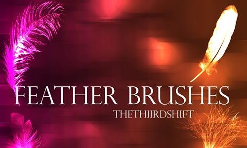 Скачать Feather Brushes