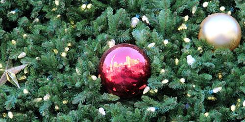 Скачать Downtown_Christmas_Tree