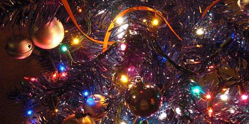 Скачать Christmas Trees