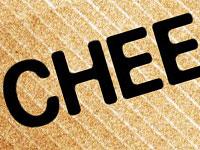 Скачать бесплатно 20 новых декоративных шрифтов за декабрь
