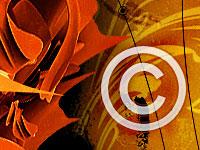 Особенности цифровых продуктов или что делать с авторским правом