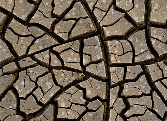 Перейти на Mud Cracks