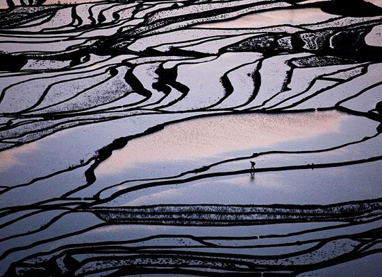 Перейти на Farmer Rice Terraces China