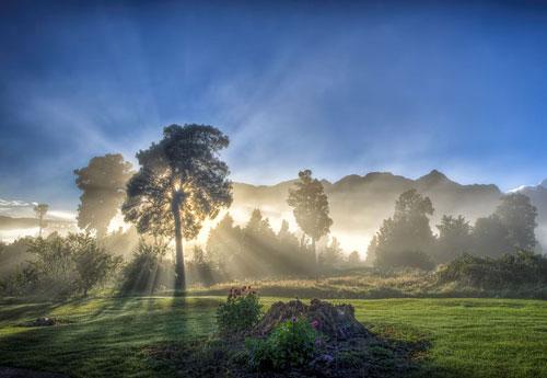 Перейти на Light Fog