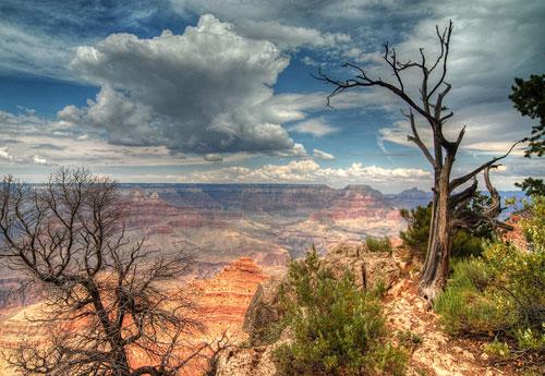 Перейти на Grand Canyon NP USA