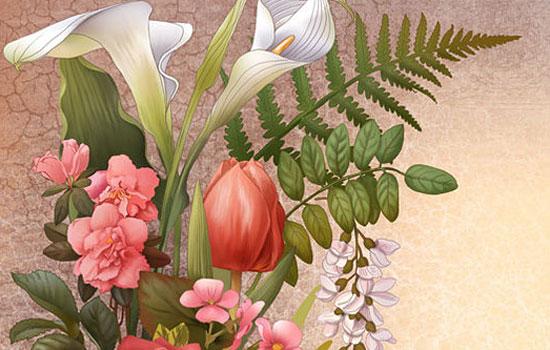 Необыкновенные авторские рисунки иллюстратора Ирины Винник