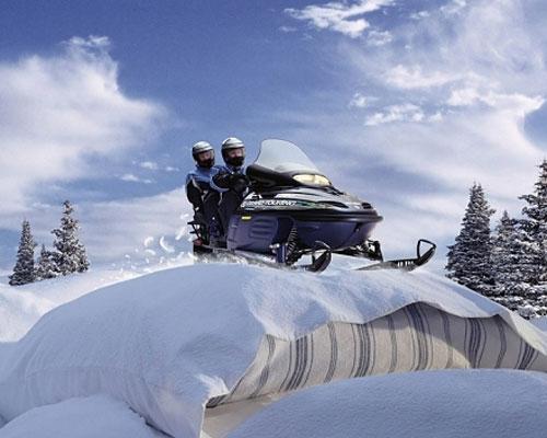 Перейти на Ski doo pillows