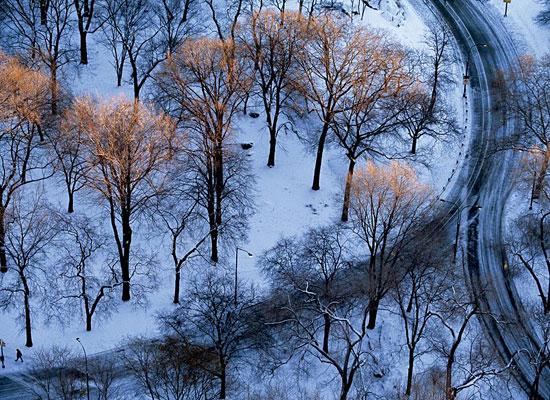 Перейти на Central Park, New York City