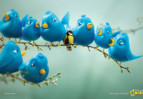 Перейти на National Geographic Kids Magazine: Twitter Birds