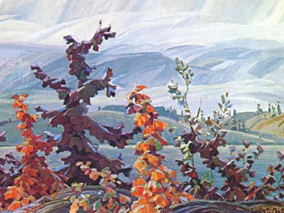 Scrub Oaks And Maples
