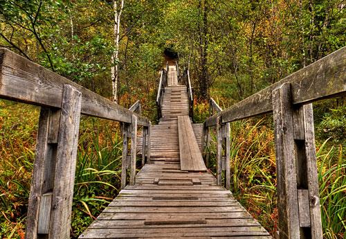 Перейти на The Bridge