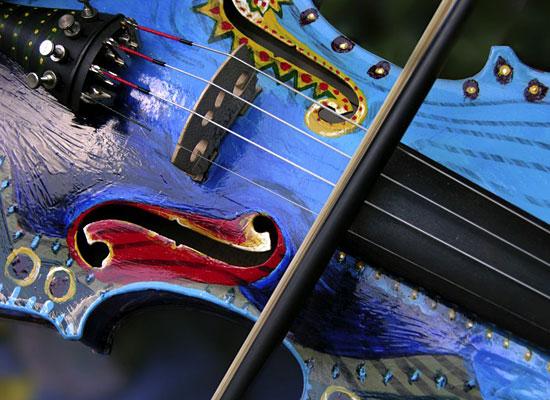 Violin Asheville Petteway White