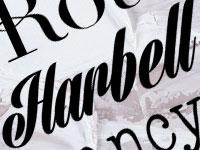 Скачать бесплатно 20 новых декоративных шрифтов за март