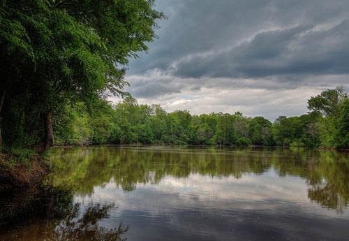 Roanoke River 6
