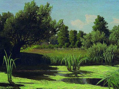 Перейти на The Landscape The Reeds In The River