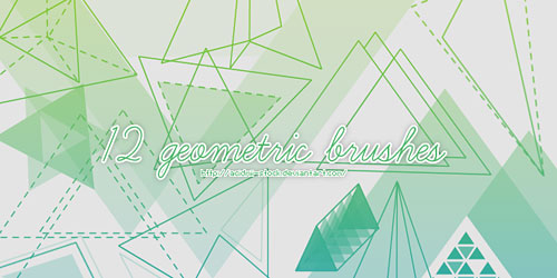 Перейти на 12 Geometric Brushes