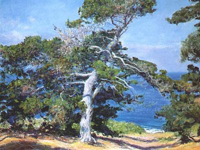 Перейти на A Carmel Pine