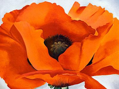 Перейти на Red Poppy