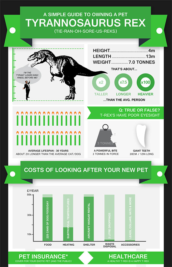 Перейти на Guide To Owning A Pet Trex