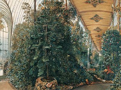 Перейти на Interior View Of The Palm House Of Lednice Castle