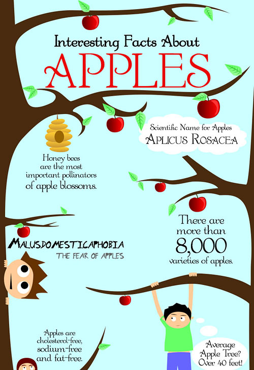 Перейти на Interesting Facts About Apples
