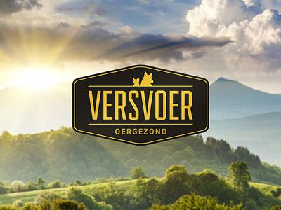 Перейти на Logo Versvoer