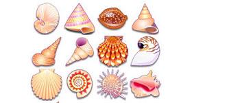 Скачать Sea Shells
