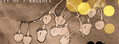 Скачать Plants And Cherries By Agnesvanharper