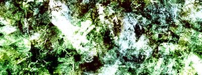 Скачать Solitarius Grunge 3
