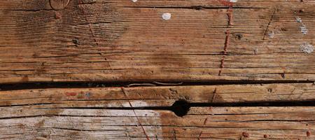 Скачать Wood Textures 1