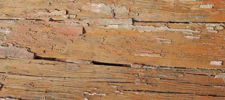 Скачать Wood Textures 5