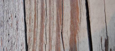 Скачать Wood Textures 8
