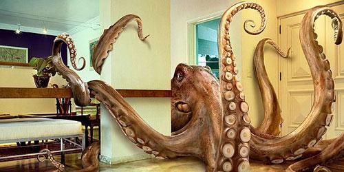 Перейти на Octopus