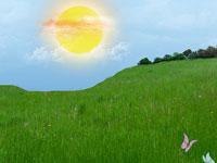 Скачать пейзажные текстуры с изображением яркой зеленой травы и голубого неба